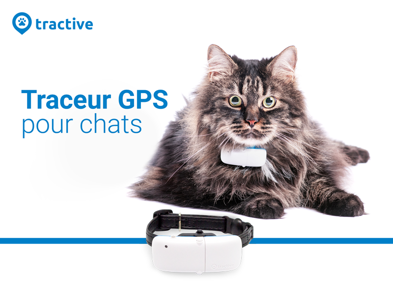 TRACTIVE TRACEUR GPS chats
